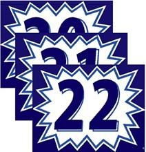 Blue and White Burst Model Years DVT333